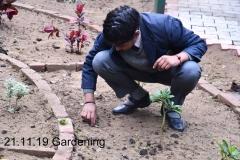 Gardening 21 Nov (3)