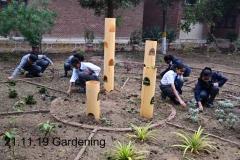 Gardening 21 Nov (4)