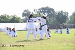 Martial Art (1)