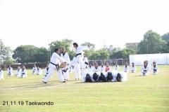 Martial Art (2)
