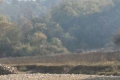 Rani Chauri trip - Class 8